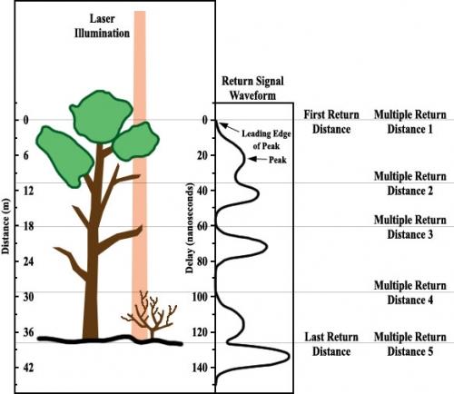 Illustratie werking laserscanning in geval er bomen staan