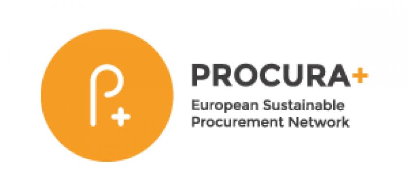 logo procuraplus