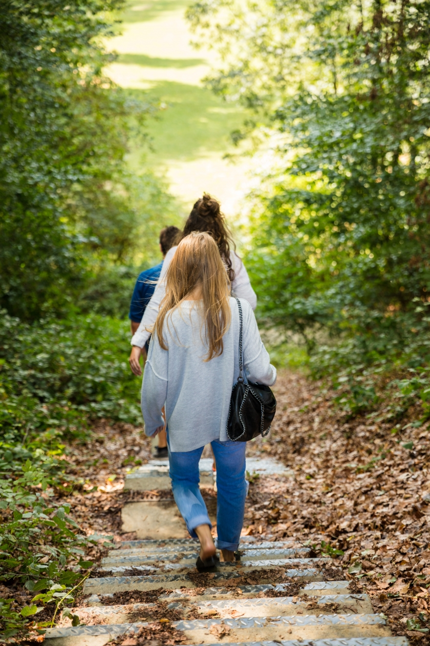 dames aan het wandelen in de natuur