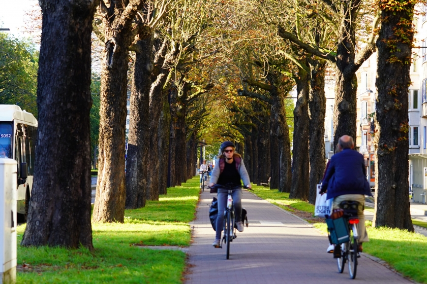 fietsende mensen tussen bomen