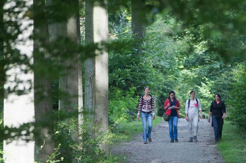 Vrouwen wandelen door bos